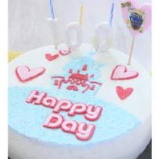 우리아이 생일날N 100일 해피데이 궁전떡케익